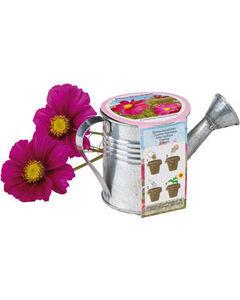 flower pot, cosmos, kozmosz, virágos kanna, nőnapi ajándék ötlet, nőnapi ajándék, nőnap, meglepetés, egyedi megoldás, kedveskedés, virág, kanna, öntözés, gondoskodás, kiskert, nyomda, Budapest nyomda, Óbuda, digitális nyomtatás, nagy formátumú nyomtatás,